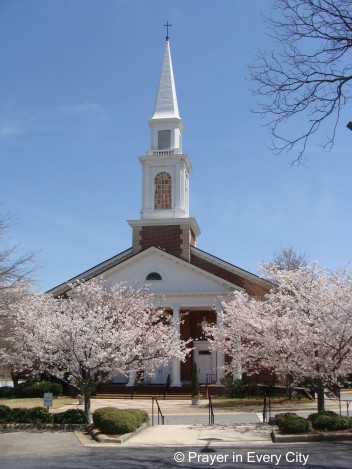 church surrounded by blooming cherry trees