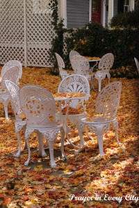 Fall Garden Chairs