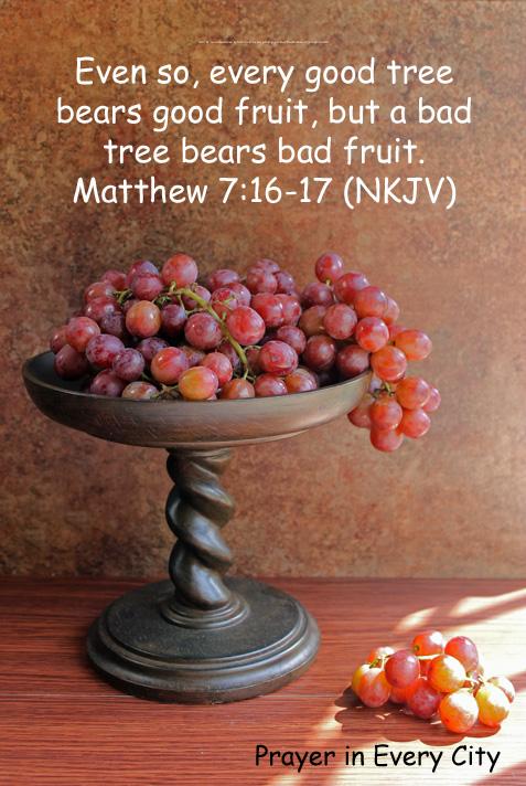 BEARING FRUIT - Simple Bible Studies