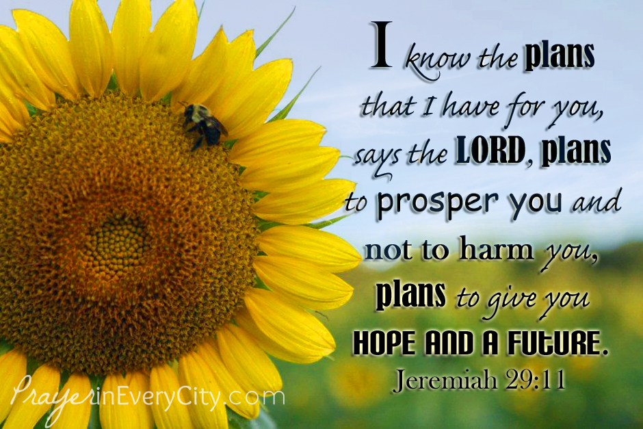 Jeremiah 29 sky H